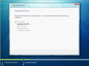 Win7 Install Processing